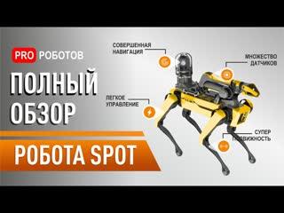 Робот Boston Dynamics Spot: распаковка и полный обзор самого крутого робота в мире