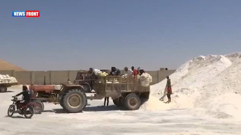 В Сирии возобновили добычу пищевой соли Репортаж Олега Блохина