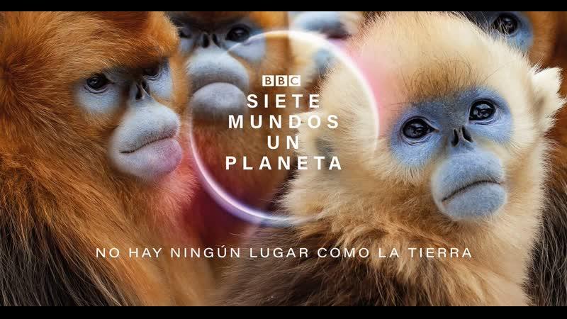 BBC Семь миров одна планета 2019 г Научно познавательный Африка