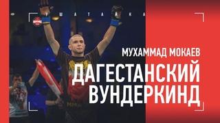 """ДАГЕСТАНСКИЙ ВУНДЕРКИНД: 23-0, пояс UFC, Олимпиада, """"новый Хабиб"""" / Мухаммад Мокаев"""