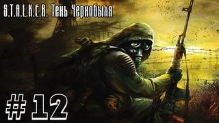 . Тень Чернобыля #12 - Дикая территория