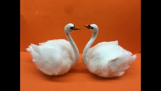 DIY Egg Shell Swan Bird    How to make Swan bird    Egg shell Craft    5min craft    BestOutOfWaste