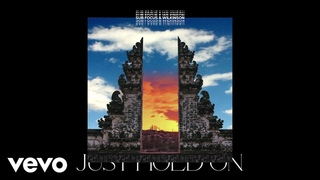 Sub Focus, Wilkinson - Just Hold On (Audio)