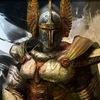Герои меча и магии: Орден порядка